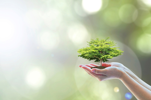 Recycling and Conserving Energy