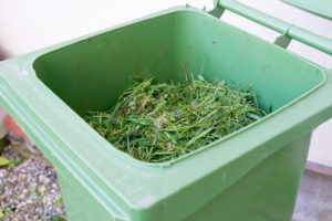 grass clippings in trash can