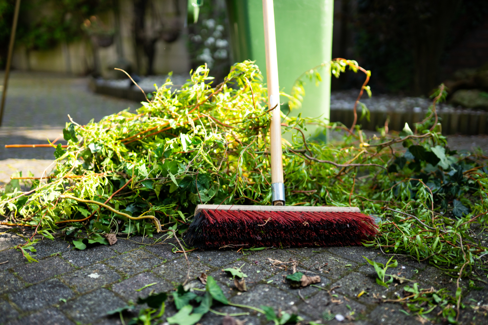 Let's Talk Trash: Taking Care of Your Green Waste